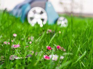 Lze přenechat péči o trávník robotům?