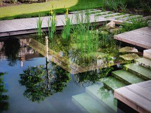 Zrcadlení vody uprostřed zahrady